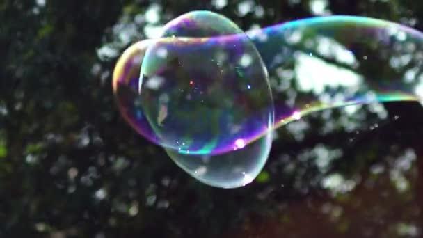 Metamorfóza velkých mýdla bubliny v pomalém pohybu. Velká bublina se třpytí