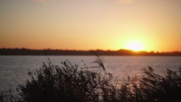wunderschöner Sonnenuntergang am Fluss. Sonnenuntergang auf dem Land