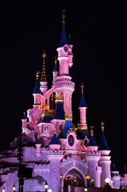 Disneyland Paris Castle illuminated at night.