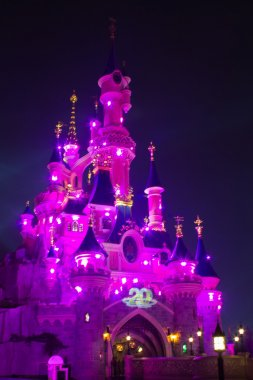 Disneyland Paris Castle illuminated at night during the 20th anniversary