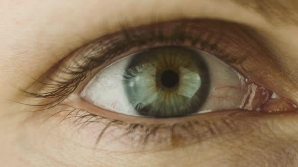 Makro snímek zblízka ženské lidské oko bliká
