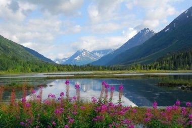 Alaskan mountain and lake landscape