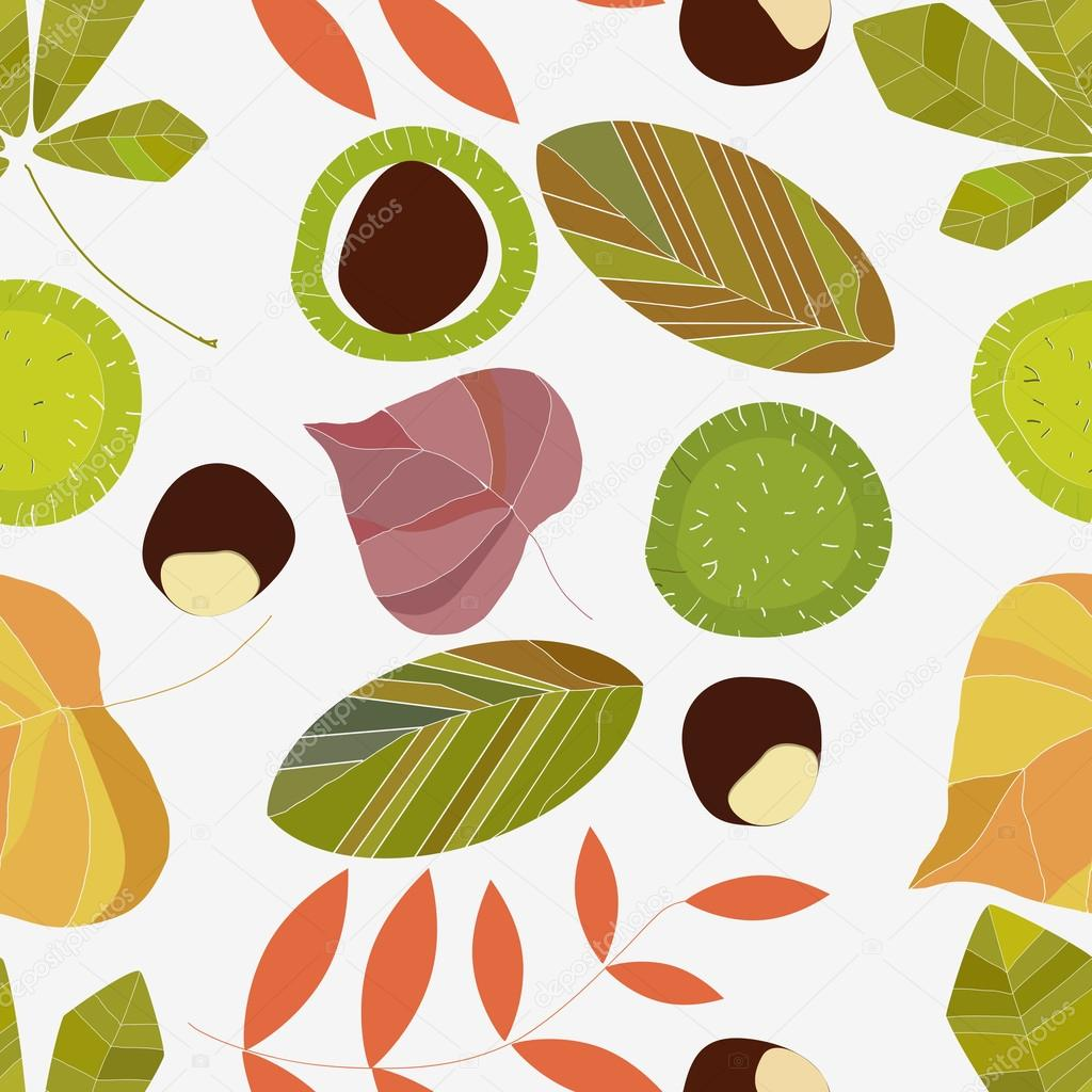 Autumn composition of leaves on a white background - Descargar autumn leaves ...