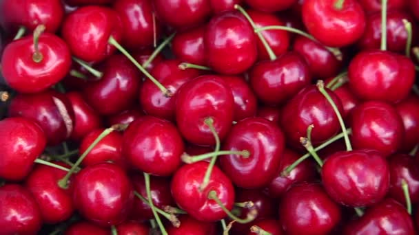 Cherries. Close-up. Directions camera.