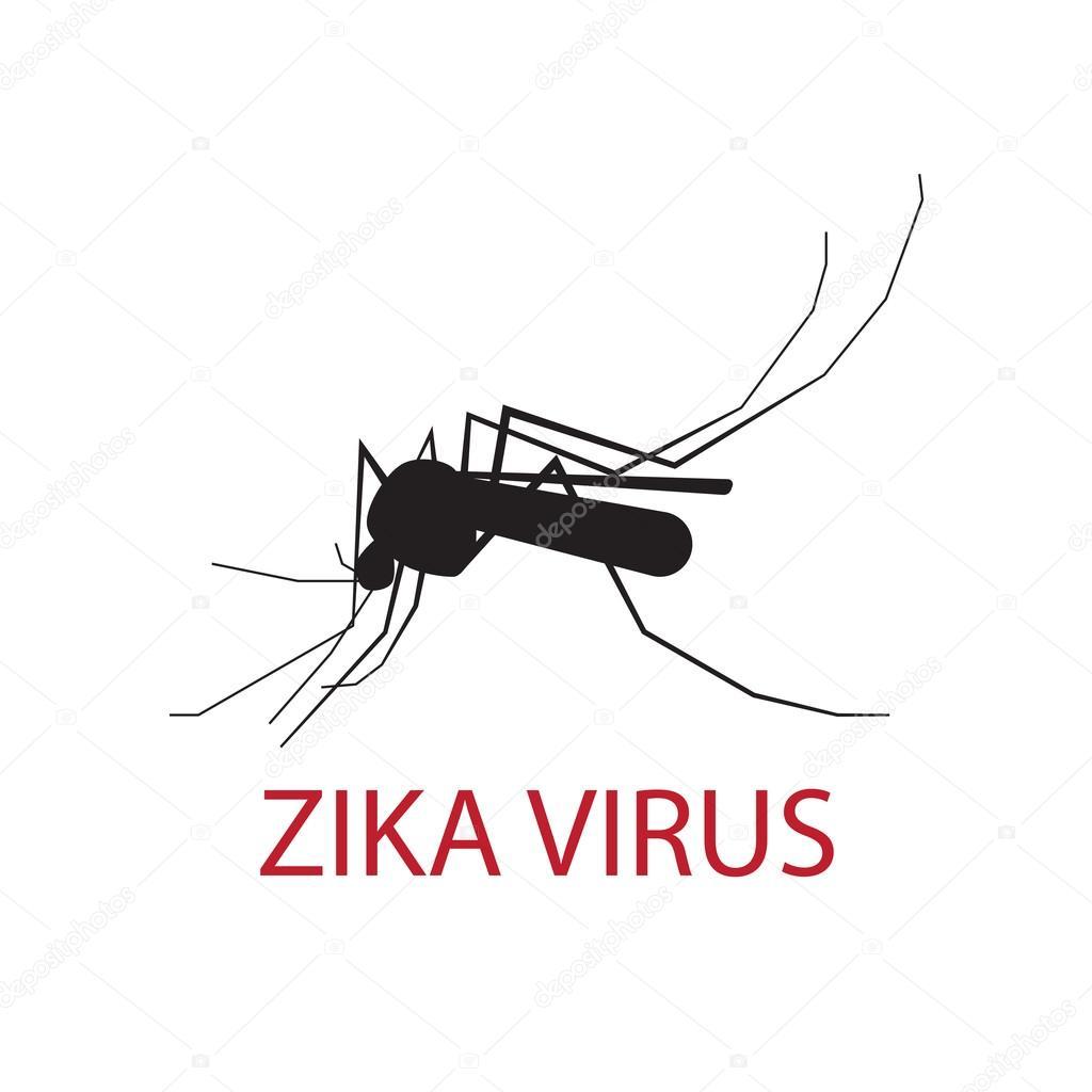 Zanzara Di Sagoma Su Uno Sfondo Bianco Venditore Ambulante Di Virus