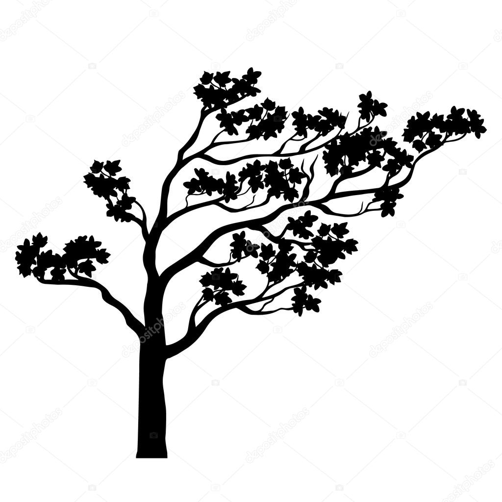 Tree sakura silhouette. Vector illustration.