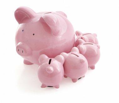 Piggy Banks on white