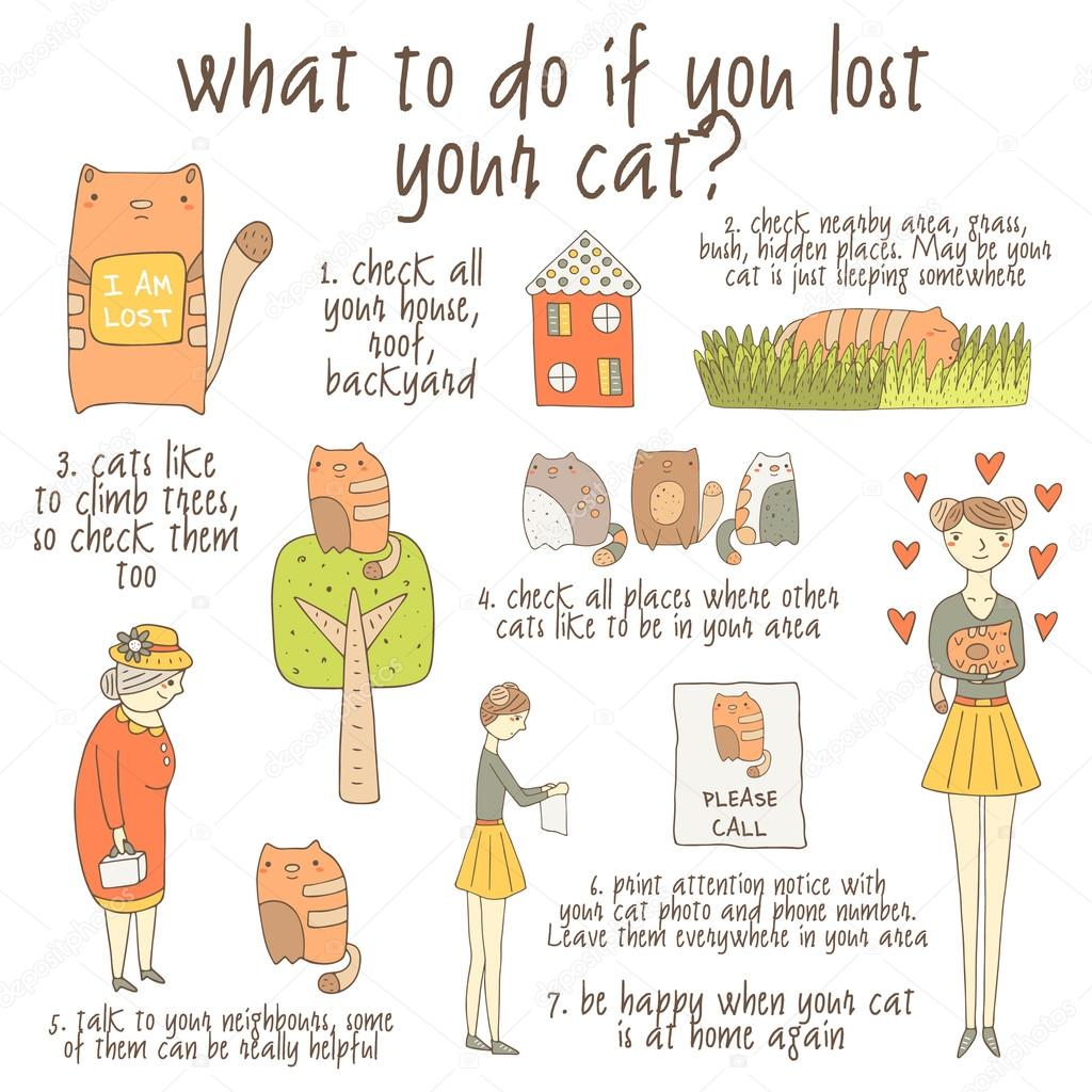 instruction about what to do if you lost your cat u2014 stock vector