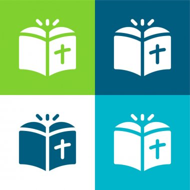 Bible Flat four color minimal icon set stock vector