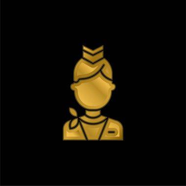 Air Hostess gold plated metalic icon or logo vector stock vector