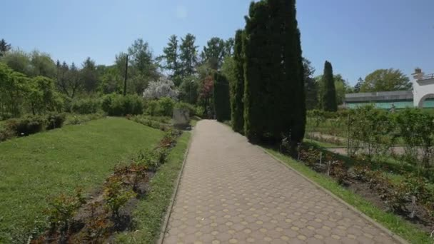Paved alley at the Botanical Garden