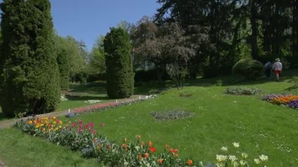 View inside the Botanical Garden, Cluj-Napoca