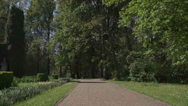 Alley at the Botanical Garden