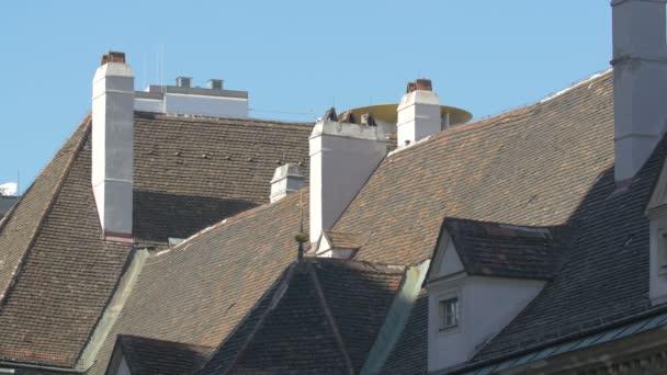 Střechy a komíny ve dne