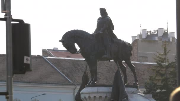 Equestrian statue and rooftops