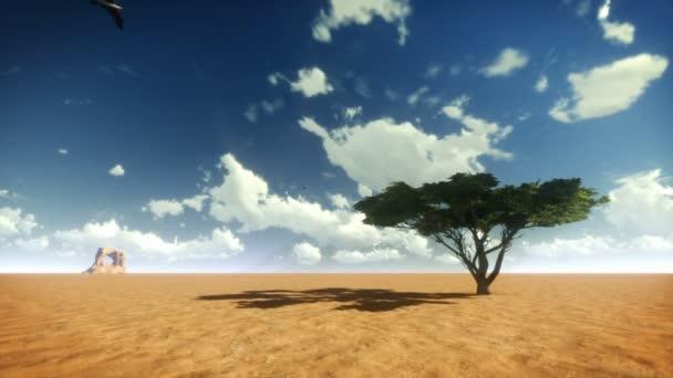 Desert strom a ptáci