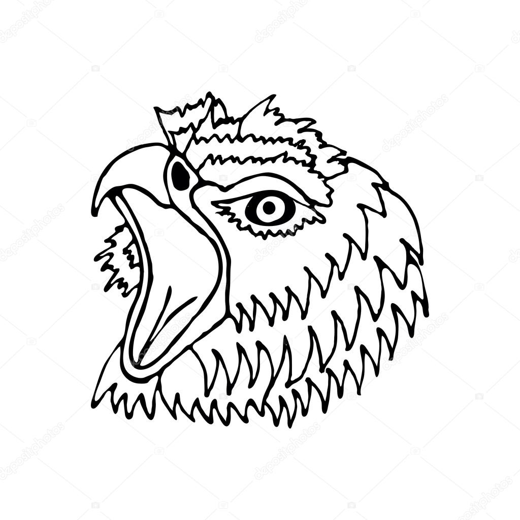 hand draw head screaming hawk can be used for logos icons