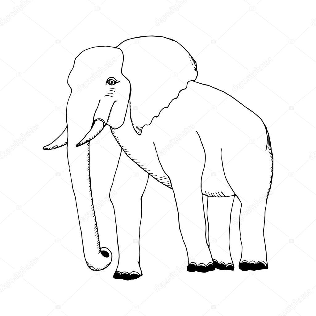 Dessin D Un Éléphant main dessiner un croquis dans le style d'un éléphant — image