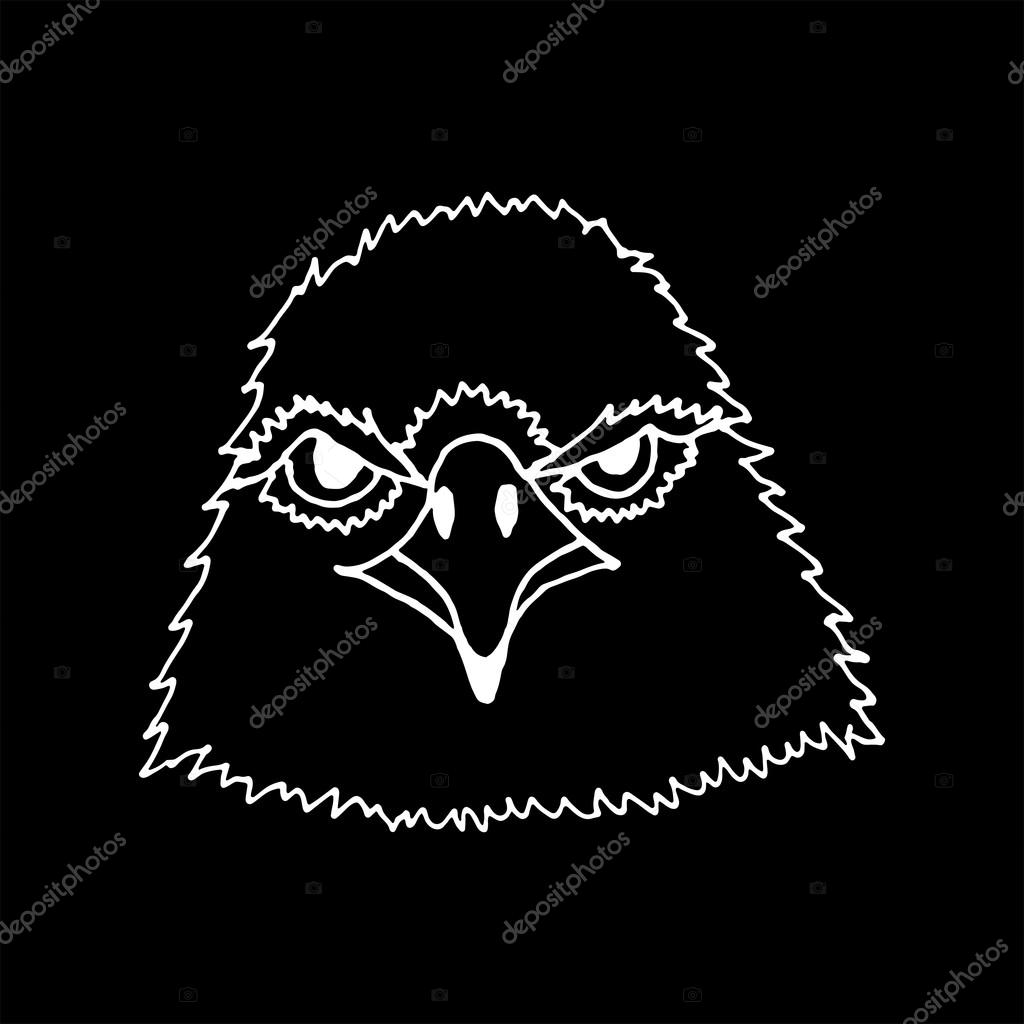 monocromo mano dibujar cabeza de águila — Archivo Imágenes ...