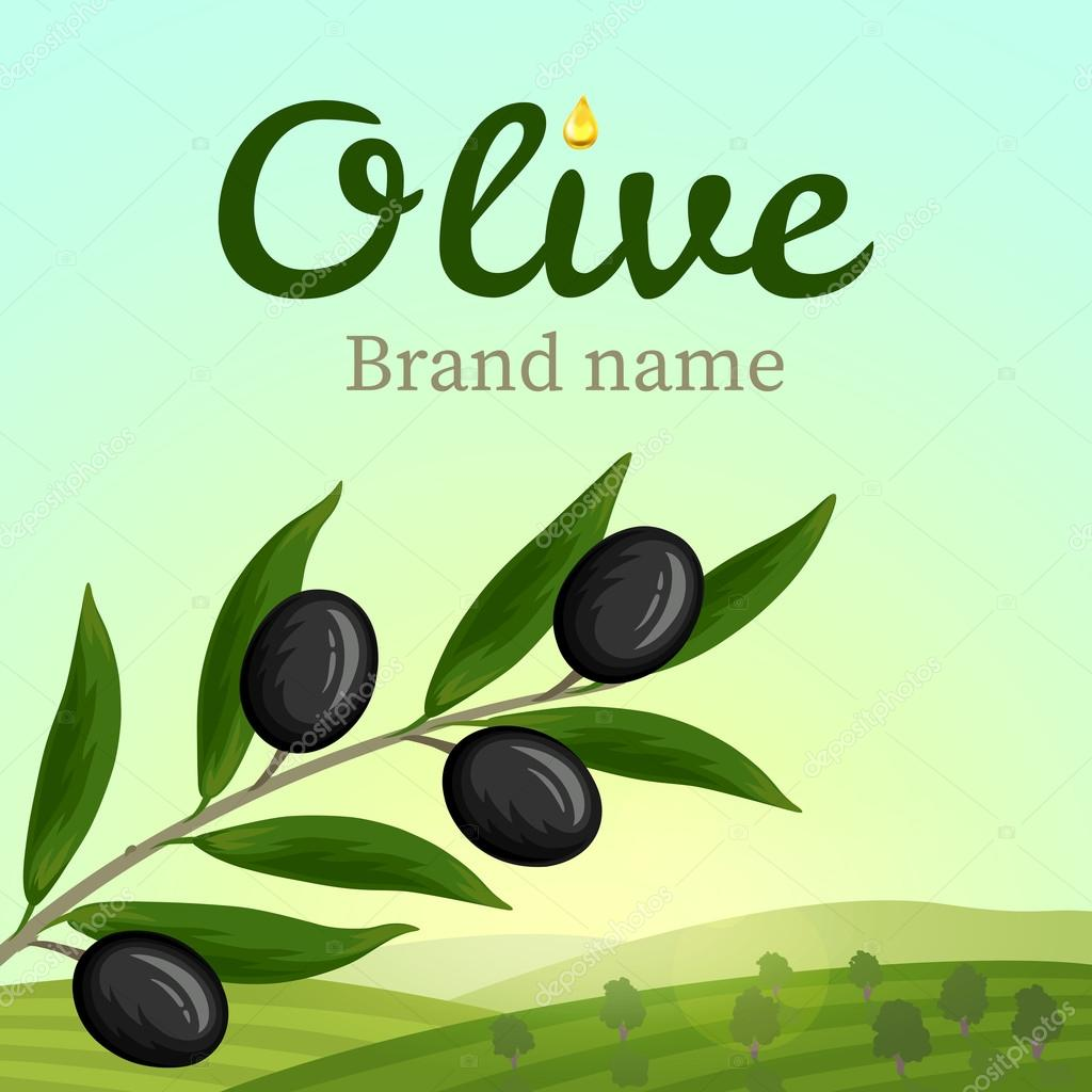 Olive label, logo design. Olive branch. Vector illustration
