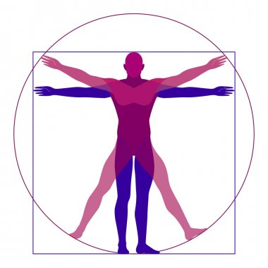 Vitruvian man, modern stylization, vector