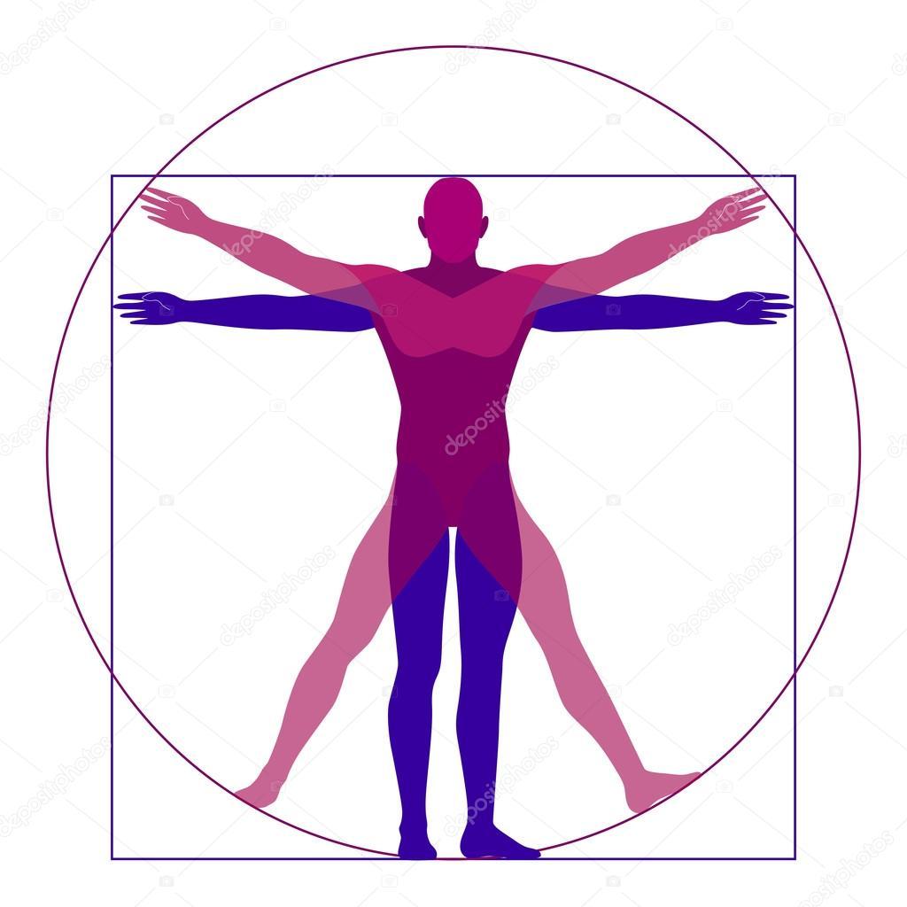 vitruvian man modern stylization vector stock vector rh depositphotos com vitruvian man vector download vitruvian man vector free