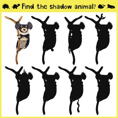 Childrens developing game to find an appropriate shadow marsupial animal koalas on the tree. Vector