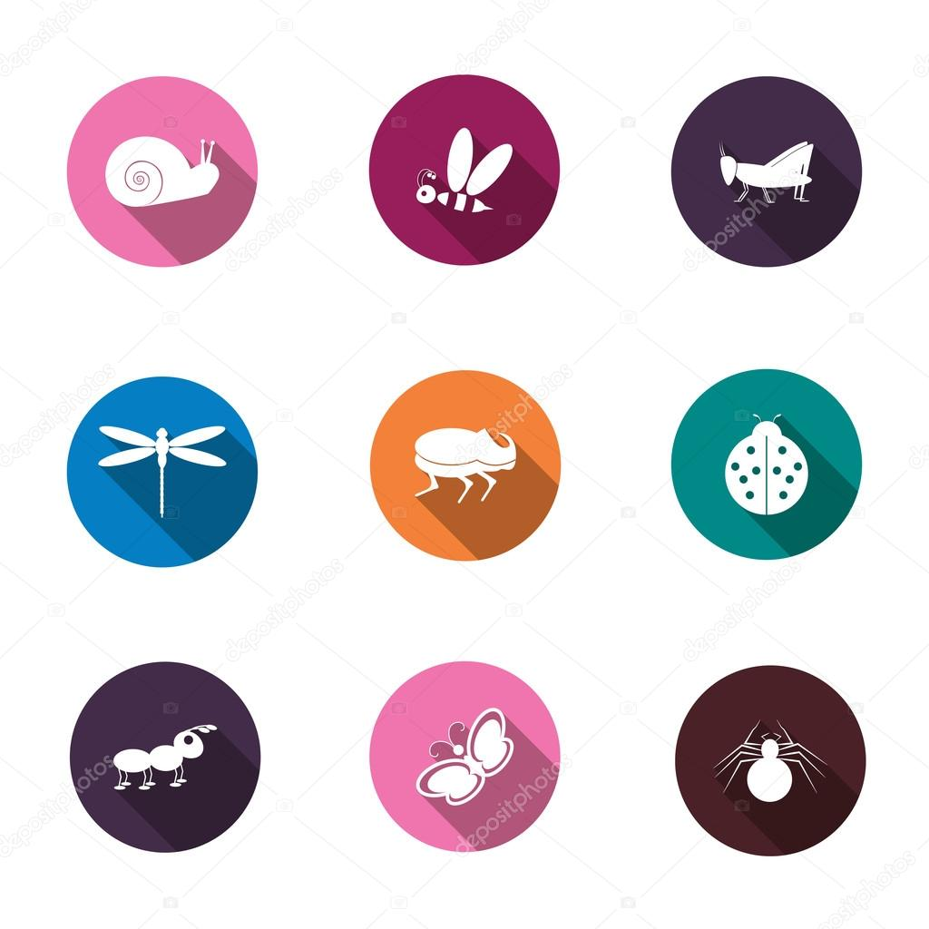A set of colorful icons isolated insects for your design