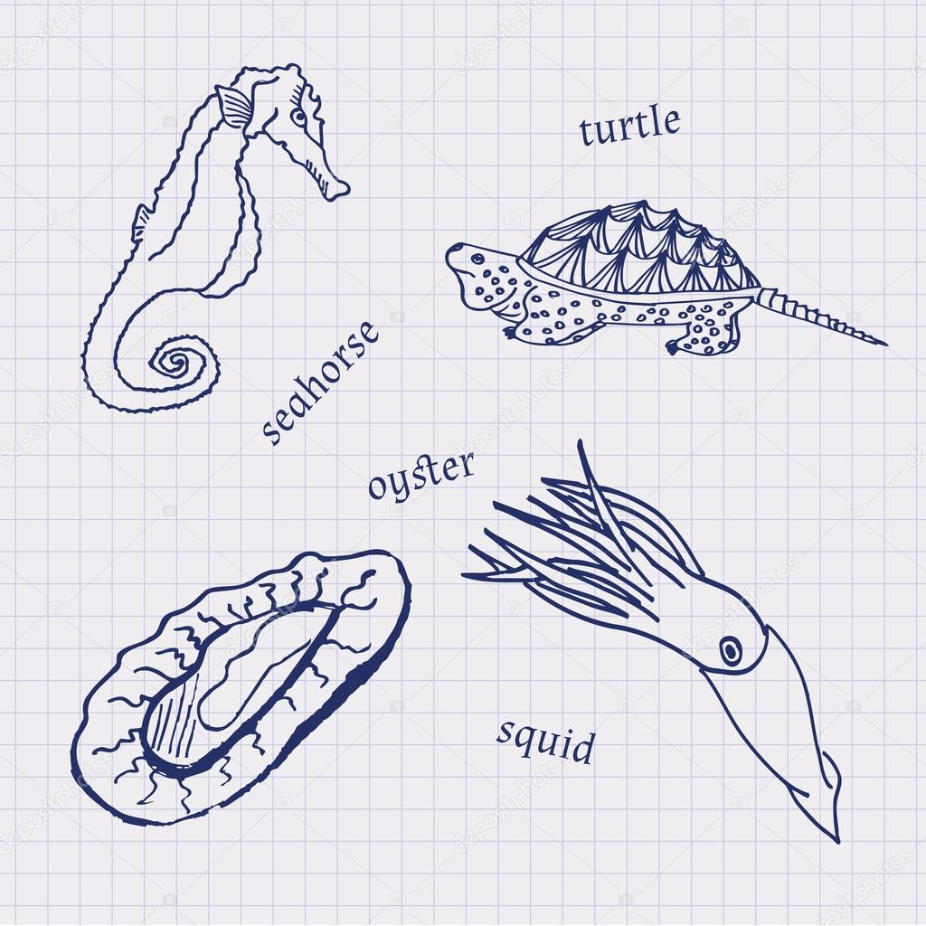Drawings in their notebooks in a cage of marine animals and seafood scallop, sea horse, squid, oysters