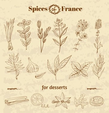 Spice in French cuisine. Herbs used in France for cooking dishes and desserts.