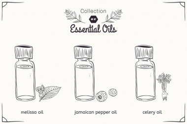 A set of essential oils in black and white style Melissa, Jamaican pepper, celery.