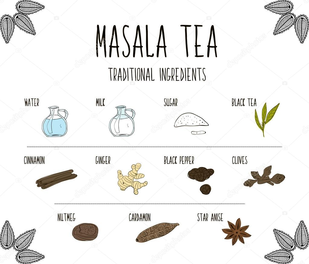 Hand-sketched collection of elements of Ayurvedic spices are part of the ancient drink masala tea. Herbs and supplements Ayurveda. Vector