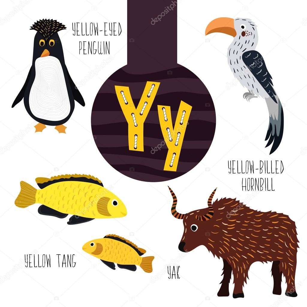 Fun Animal Letters Of The Alphabet For The Development And Learning Of Preschool Children Set Of Cute Forest Domestic And Marine Animals With The Letter Y Vector Vector Image By