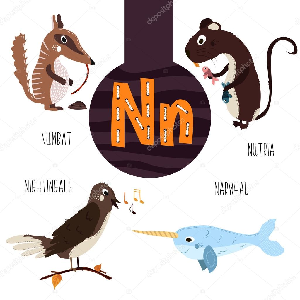 Image of: Animal Alphabet Set Of Cute Forest Domestic And Marine Animals With The Letter N Vector Illustration Vector Van Alyonkalis Depositphotos Fun Animal Letters Of The Alphabet For The Development And Learning