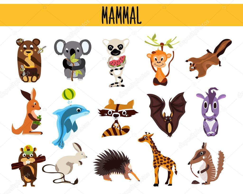 set of cute cartoon animals mammals living in different parts of