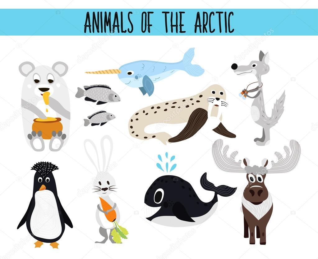 Set of Cute cartoon Animals and birds of the Arctic on a white ...