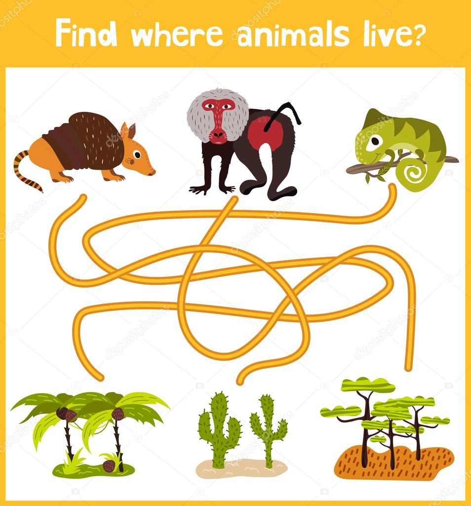 Fun and colorful puzzle game for children's development find where the Armadillo, the baboon and the lizard is a chameleon. Training mazes for preschoolers. Vector
