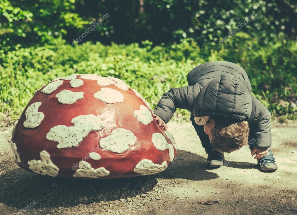 little boy in search for some gnomes under a mushroom
