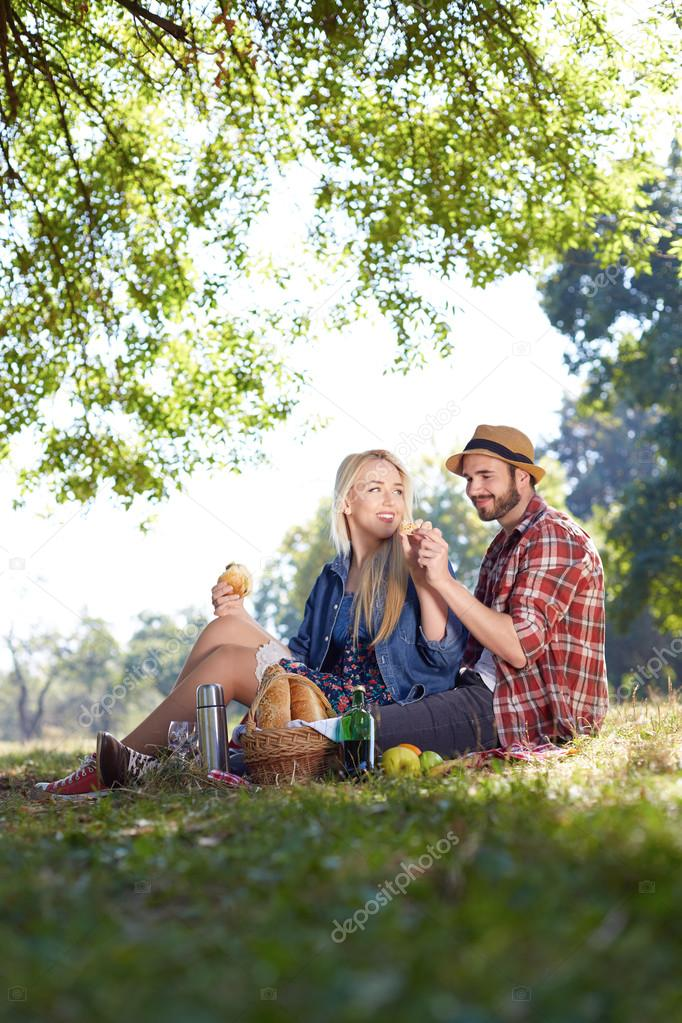 Beautiful Young Couple Having Picnic in Countryside. Happy Famil