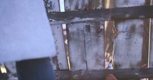 Staré omšelé dřevěný plot 4k video, objektivu flare, slunný zimní den