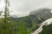 Panoramatický výhled na vrcholky Alp v Rakousku z Marsteinu. Sjezdovky jsou ještě částečně pokryty sněhem. Kamenité a ostré hory. Zataženo. Obnažené svahy, hustý les na úpatí kopce.