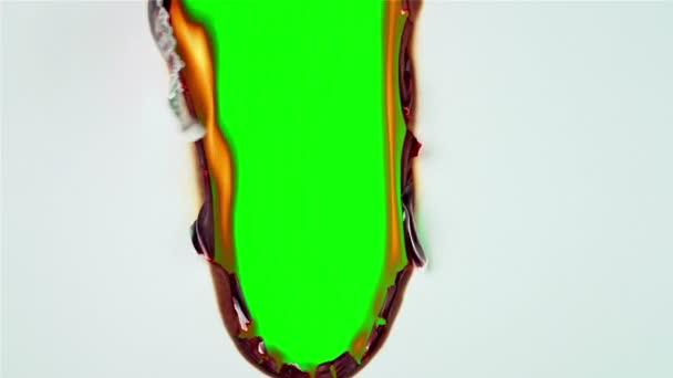 Hořící bílá kniha o zelenou obrazovku.