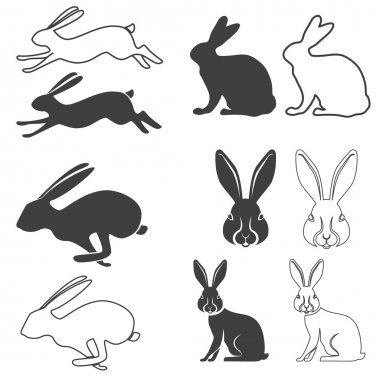 hare set in vector