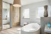 Interiér moderní koupelnu s oddělenou vanou, velkým zrcadlem a dřevěné podlahy.