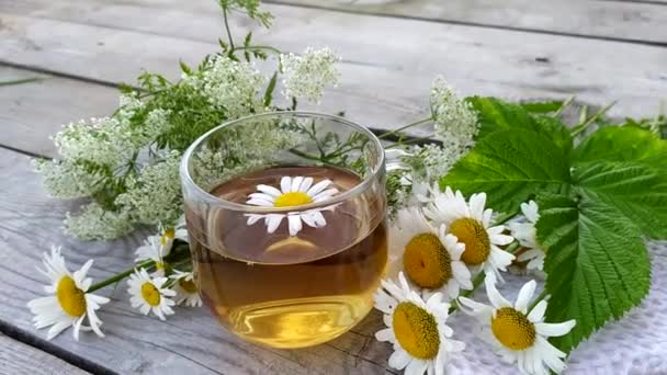 Chamomile tea. Herbal healing summer drink in a glass cup stands on a wooden background. Chamomile flowers are brewed in boiling water.