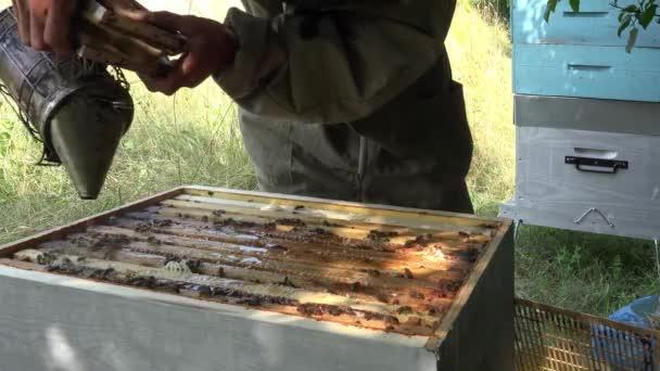 dohányzás, méhek és tisztítása a felső keret