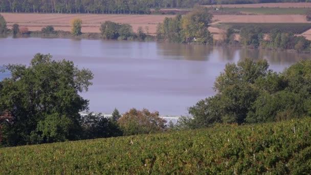 Vineyard hills on the banks of the Garonne