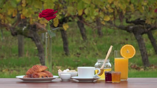 French breakfast on vineyards background,