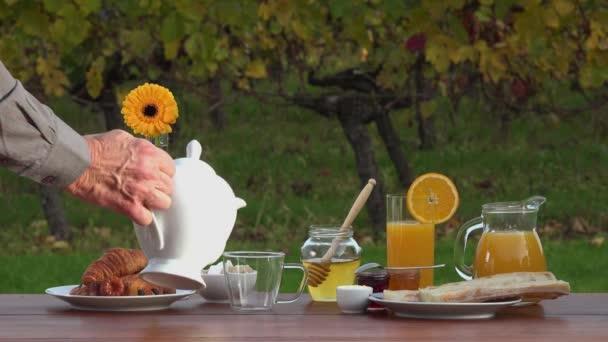 Francouzská snídaně na pozadí vinice