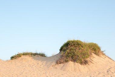 Blue sky over a  dune rim